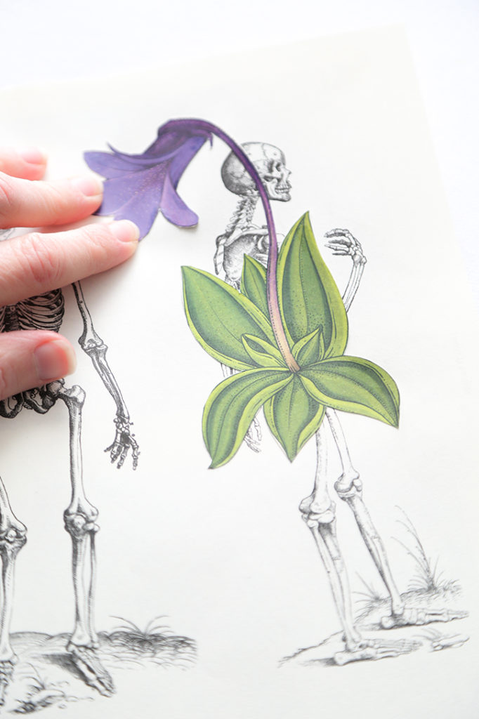 DIY Skeleton Botanical Art for Halloween